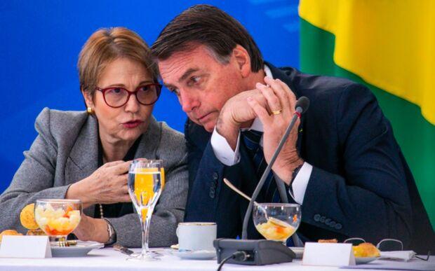 Tereza Cristina elogia Bolsonaro na Cúpula do Clima: 'revolucionou o agro'
