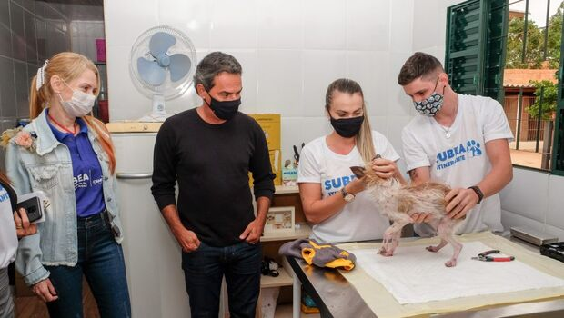 Prefeitura inaugura programa Subea Itinerante para atender Ongs e protetores de animais