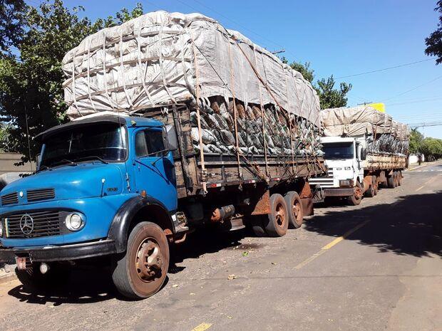 PMA apreende cargas de carvão ilegal e aplica multa de R$ 49,2 mil