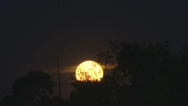 'Lua de Morango' deixa Campo Grande mais bela e é a última superlua do ano