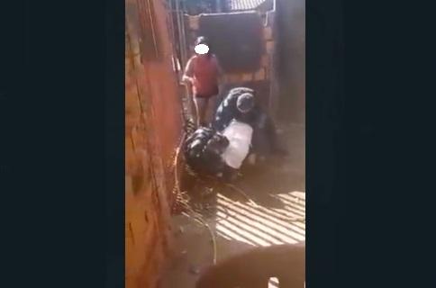 Família de traficantes fica 'ofendidinha' e expõe ação da PM em Anastácio (veja o vídeo)
