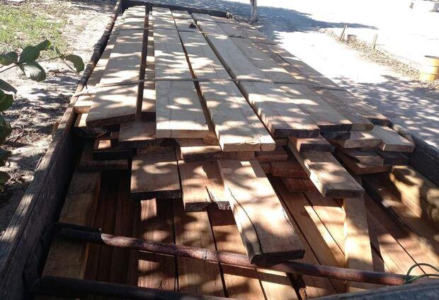 PMA apreende caminhão com carga de madeira ilegal e autua serraria em R$ 2,4 mil