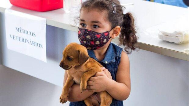 4ª edição da feira de doação de gatos e cães será realizada na Cidade Morena