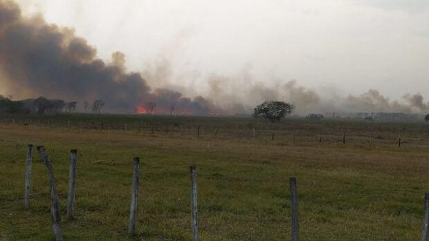 Chuva ameniza incêndios no Pantanal