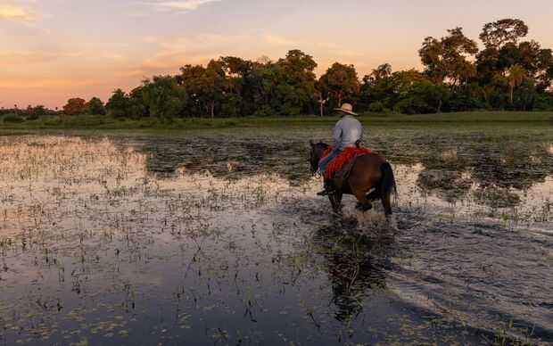 Peão morre esmagado por égua no Pantanal e nem funerária consegue acessar fazenda
