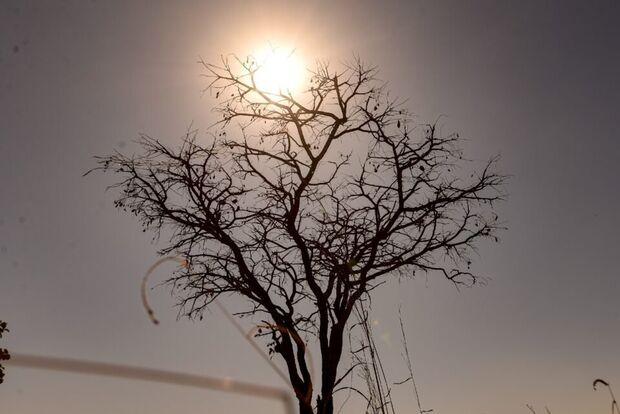 MS está em alerta para riscos florestais e danos à saúde em razão do tempo seco