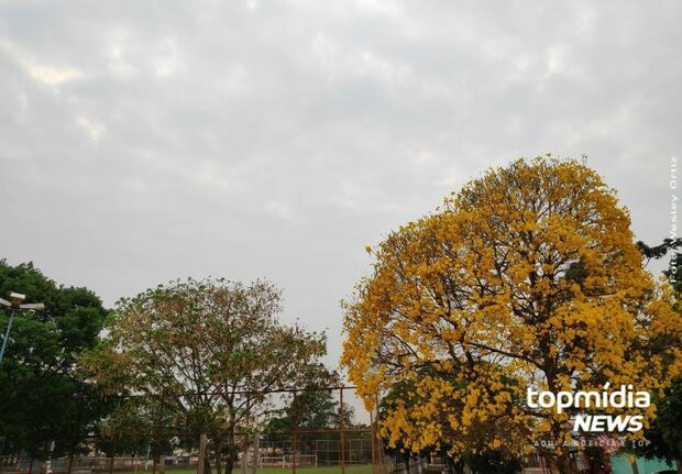 Quarta-feira de calor, chuvas e trovoadas em Campo Grande e MS