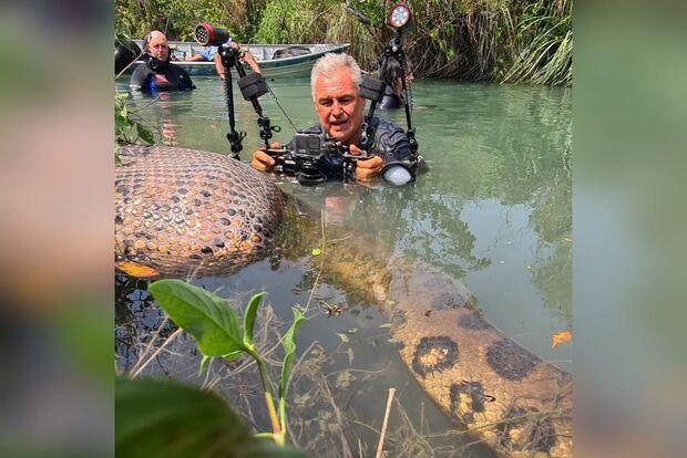 Fotógrafo flagra sucuri se alimentando e trocando de pele em Bonito
