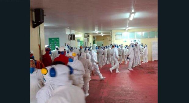 Funcionários param abate de frangos e denunciam trabalho exaustivo em Sidrolândia