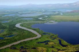 Sesc MS promove excursão para o Pantanal Mato-Grossense