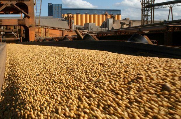 Exportação de soja brasileira em 2013 registra crescimento de 150%