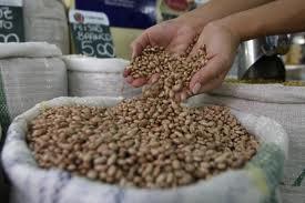 Safra de feijão é insuficiente para atender ao consumo, afirma SNA