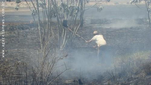 Incêndio destrói lavoura de soja e palhada em MS