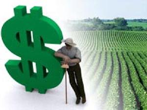 Seguradora americana concedeu US$ 3,3 bilhões em créditos agrícolas no Brasil em 2013