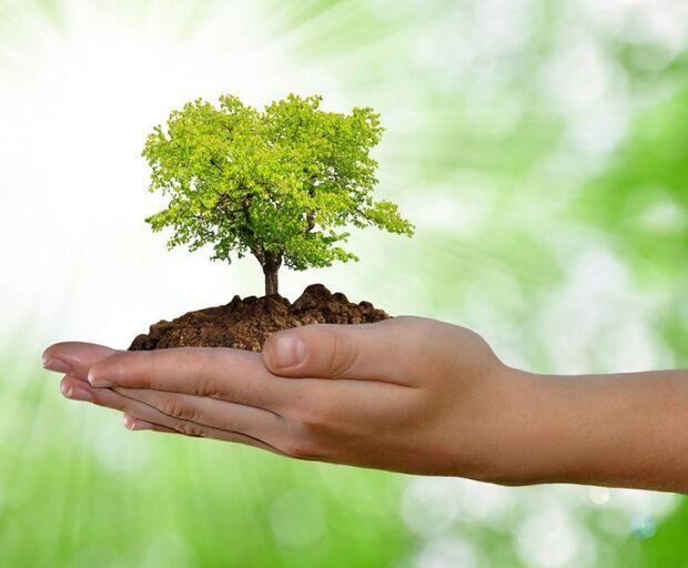 Em 2014, haverá conferências importantes para os rumos da agenda ambiental
