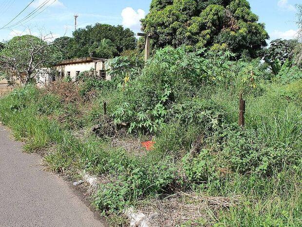 Moradores do Jardim Jandaia denunciam lixo e mato em áreas públicas