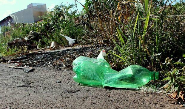 Terrenos que acumulam lixo ajudam aumentar casos de leishmaniose