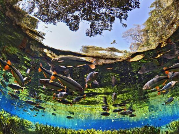 Bonito é reconhecido como Maior Turismo Responsável do Mundo