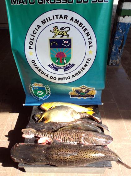 PMA apreende 40kg de pescado em um mês de Piracema