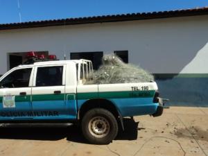 PMA apreende 3 km de redes e soltam 40 quilos de peixes vivos