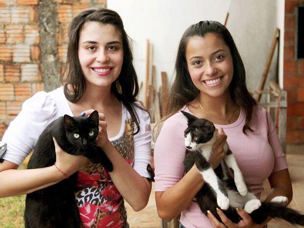 Por amor, irmãs cuidam de 22 gatos de rua em casa