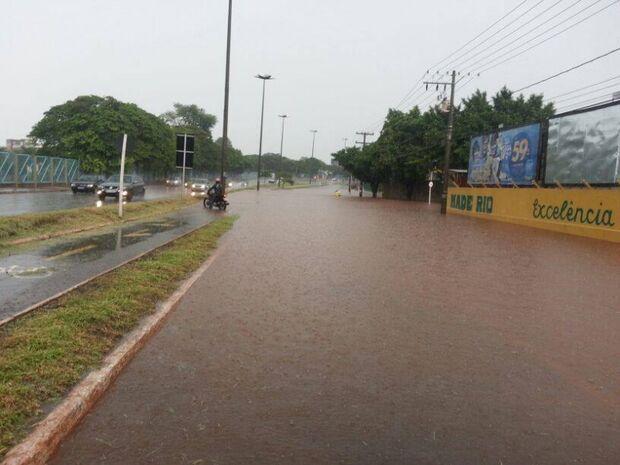 Campo Grande registra chuva forte e queda de árvores em pontos da cidade