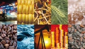 Cai preço de produtos primários brasileiros negociados no exterior