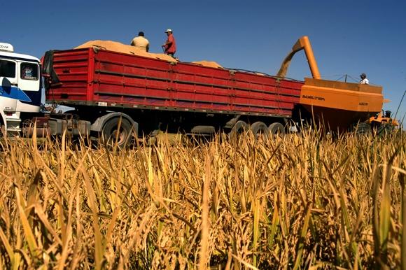 Produção de grãos no Brasil deve crescer 5,2% na safra 2013/2014