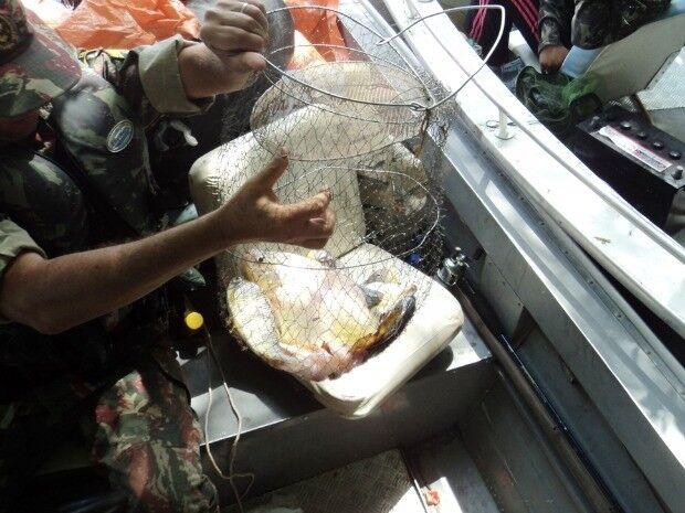 PM apreende 31 pescados em Guia Lopes da Laguna; peixes foram encaminhados à PMA de Jardim