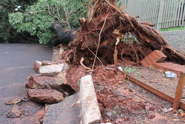 Chuva intensa causa alagamentos  e quedas de árvores na Capital