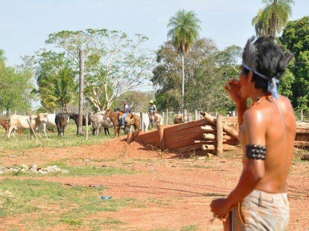 Produtores rurais conseguem evitar invasão de propriedade em Miranda