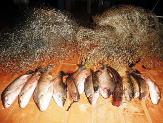 PMA prende quatro pescadores e aplica R$ 4,4 mil em multa