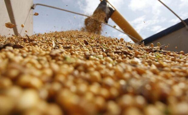 Quatro produtos agropecuários de MS foram responsáveis por 63% da receita