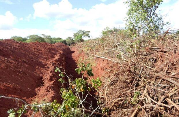 PMA flagra desmatamento ilegal realizado em fazenda de Paranaíba