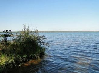 Homem morre afogado após mergulho no Rio Sucuriú