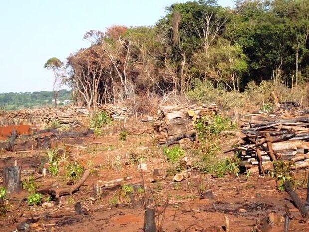 Proprietário de fazenda em Bonito é multado por desmate ilegal