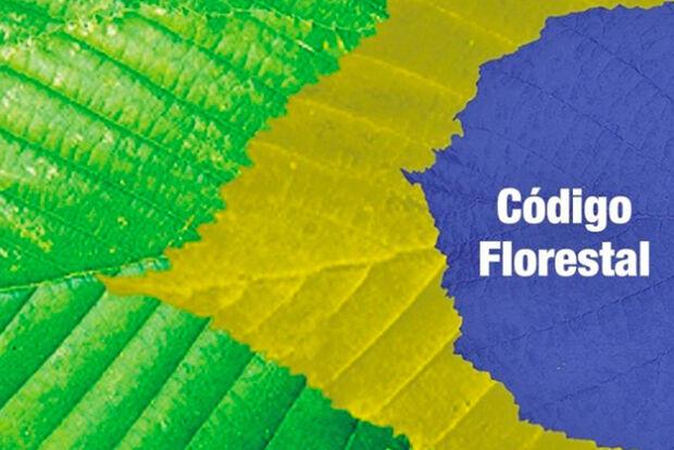 Implantação do novo Código Florestal esbarra em burocracia do sistema federal