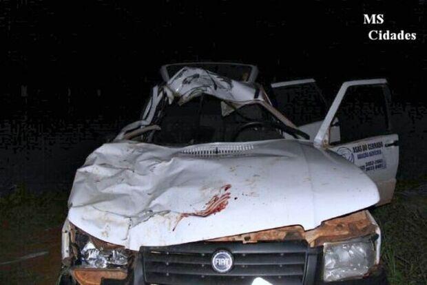 Vaca solta na rodovia causa acidente grave na MS-145