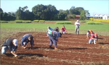 Abertas inscrições para curso Técnico em Agropecuária