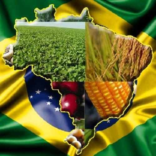 MAPA prevê crescimento de 9,6% no faturamento do agronegócio para 2013