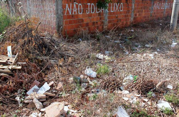 Falta de limpeza em quintais provoca aumento no índice de infestação da dengue em Campo Grande