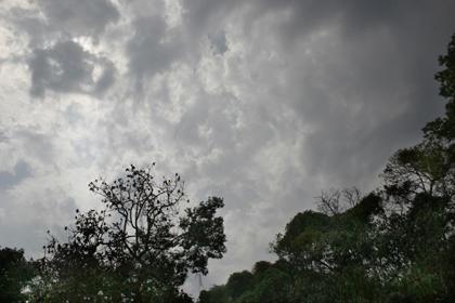 Tempo nublado com períodos de chuva  em Campo Grande