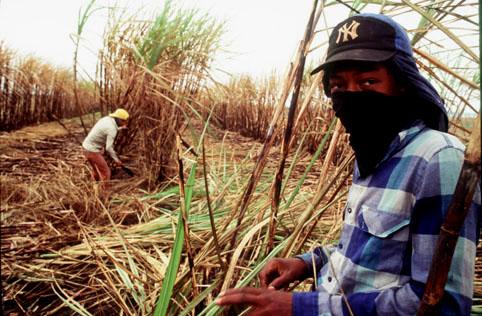 Brasil fica  entre os piores em ranking de trabalho escravo