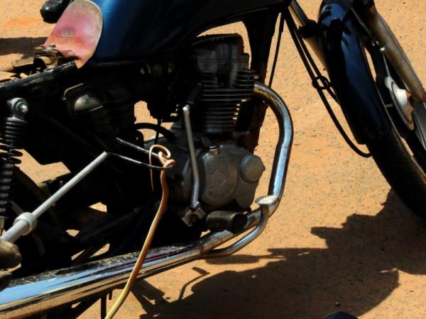 Cobra é flagrada subindo moto em Três Lagoas