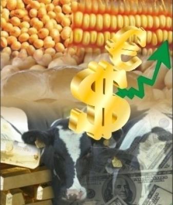 Linhas de crédito para produtores rurais registram aumento de 120% em contratações