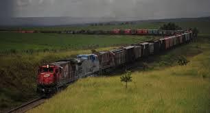 Concessão de ferrovias em MS tem prioridade na pauta do governo federal