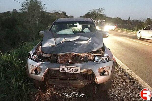 Ex-deputado atropela vaca em rodovia e sai ileso de acidente