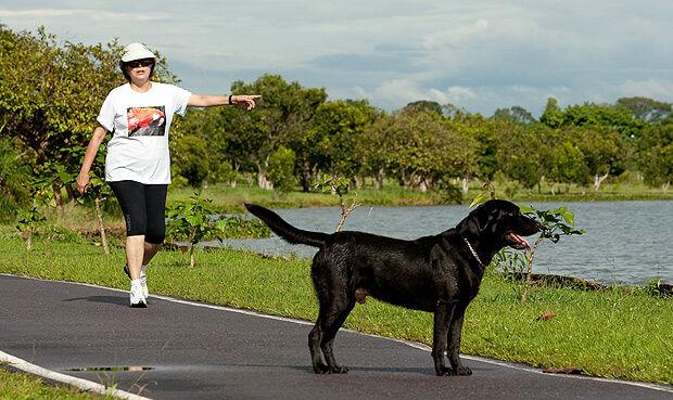 Estrela de campanha, cão não se mudará com Dilma por saúde frágil