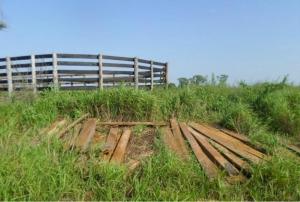 Proprietário rural é autuado em R$ 2,1 mil por armazenamento ilegal de madeira