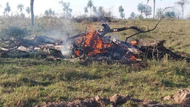 PMA autua fazendeiro em R$ 4,8 mil por incêndio e extração ilegal de madeira